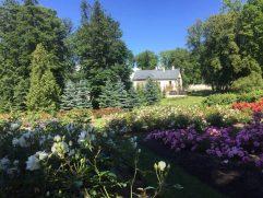 Kadriorg Gardens, Tallinn