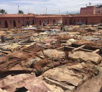 The Tanneries Marrakech